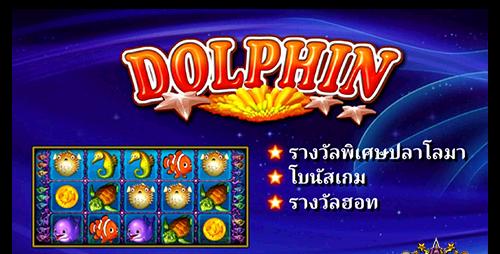 easy-dolphin สล็อตออนไลน์
